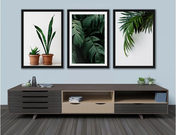 Zielone liście roślin