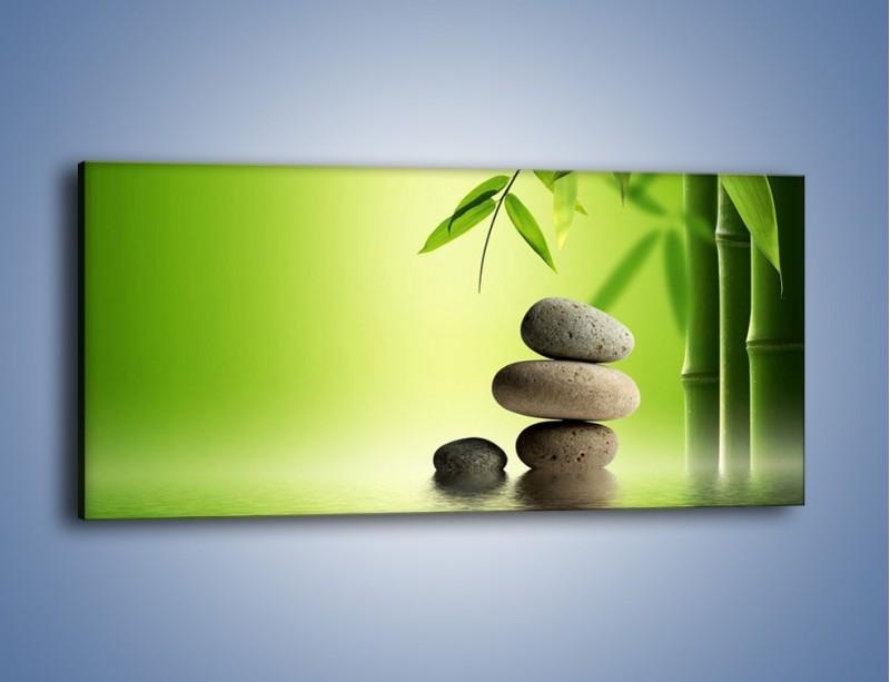 Obraz na płótnie – Kamień i roślinka – jednoczęściowy panoramiczny KN954