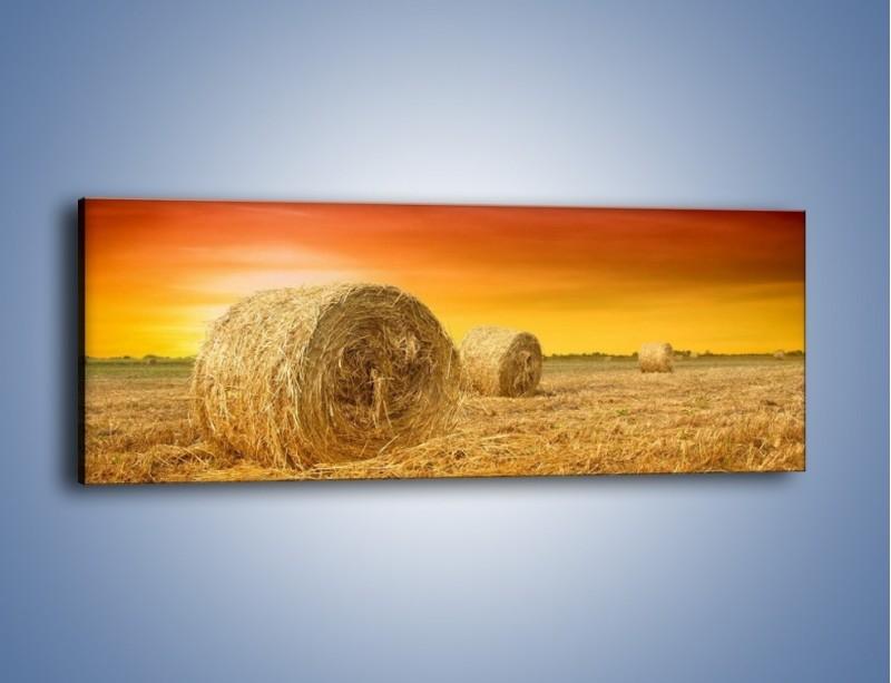 Obraz na płótnie – Koła z siana – jednoczęściowy panoramiczny KN958