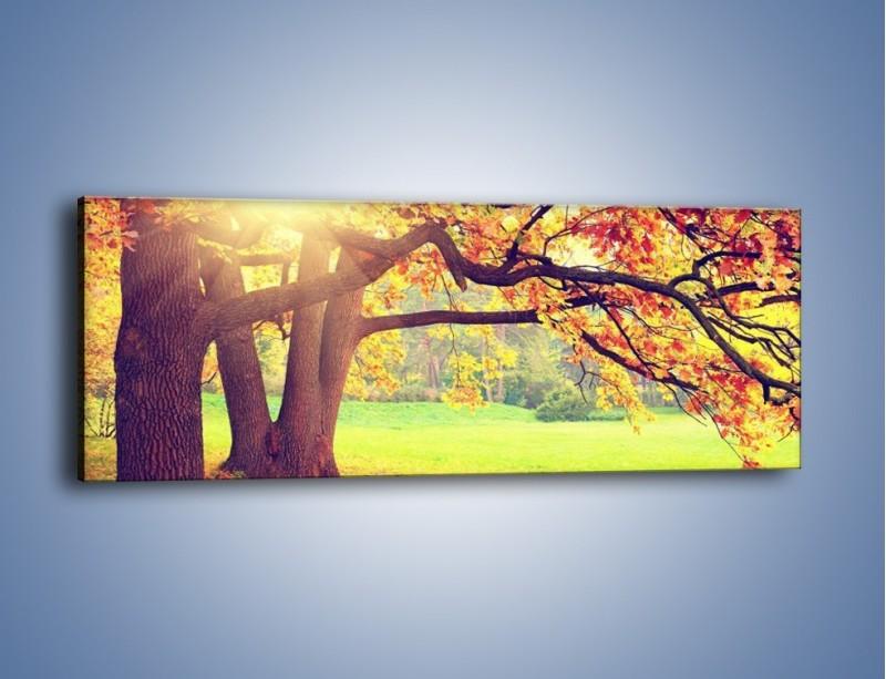 Obraz na płótnie – Jesienią w parku też jest pięknie – jednoczęściowy panoramiczny KN967
