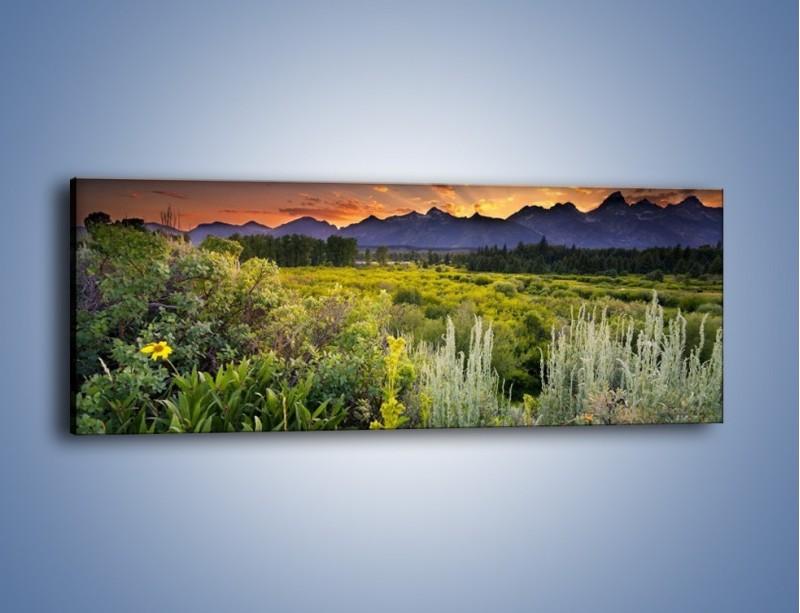 Obraz na płótnie – Wieczorny spokój na polanie – jednoczęściowy panoramiczny KN987