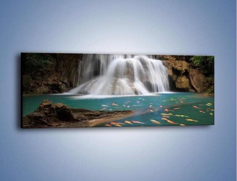 Obraz na płótnie – Wodospad i kolorowe rybki – jednoczęściowy panoramiczny KN994
