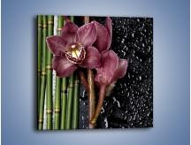 Obraz na płótnie – Bordo kwiata wśród bambusów – jednoczęściowy kwadratowy K576