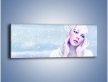 Obraz na płótnie – Delikatna królowa śniegu – jednoczęściowy panoramiczny L224