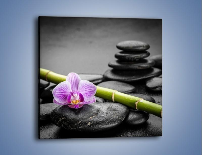 Obraz na płótnie – Bambus czy storczyk – jednoczęściowy kwadratowy K686