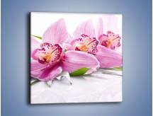 Obraz na płótnie – Biały kwiatowy stół – jednoczęściowy kwadratowy K688
