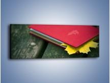 Obraz na płótnie – Książka z jesiennym akcentem – jednoczęściowy panoramiczny O167