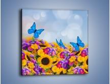 Obraz na płótnie – Bajka o kwiatach i motylach – jednoczęściowy kwadratowy K794