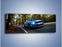 Obraz na płótnie – Ford Shelby GT500 – jednoczęściowy panoramiczny TM039