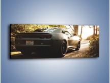 Obraz na płótnie – Chevrolet Camaro w matowym kolorze – jednoczęściowy panoramiczny TM132