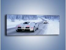 Obraz na płótnie – Bugatti Veyron w śniegu – jednoczęściowy panoramiczny TM134