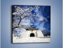 Obraz na płótnie – Azjatycka architektura z białymi kwiatami – jednoczęściowy kwadratowy AM300