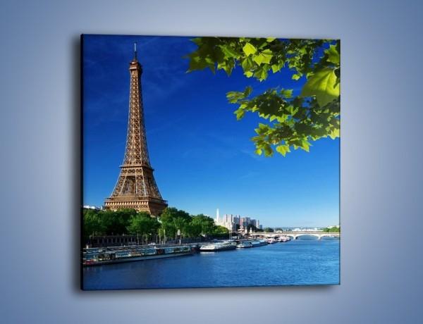 Obraz na płótnie – Wieża Eiffla w piękny dzień – jednoczęściowy kwadratowy AM304