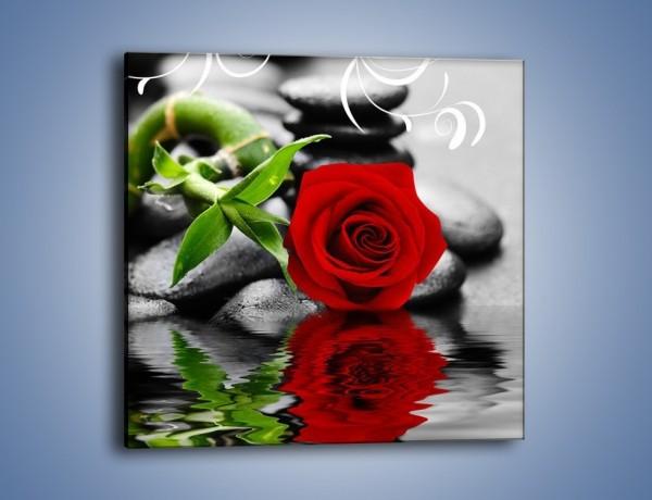 Obraz na płótnie – Róża bambus i woda – jednoczęściowy kwadratowy K928