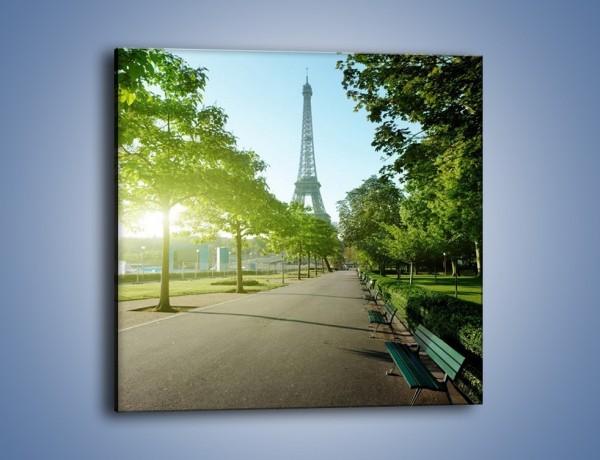 Obraz na płótnie – Uliczka w parku na tle Wieży Eiffla – jednoczęściowy kwadratowy AM308