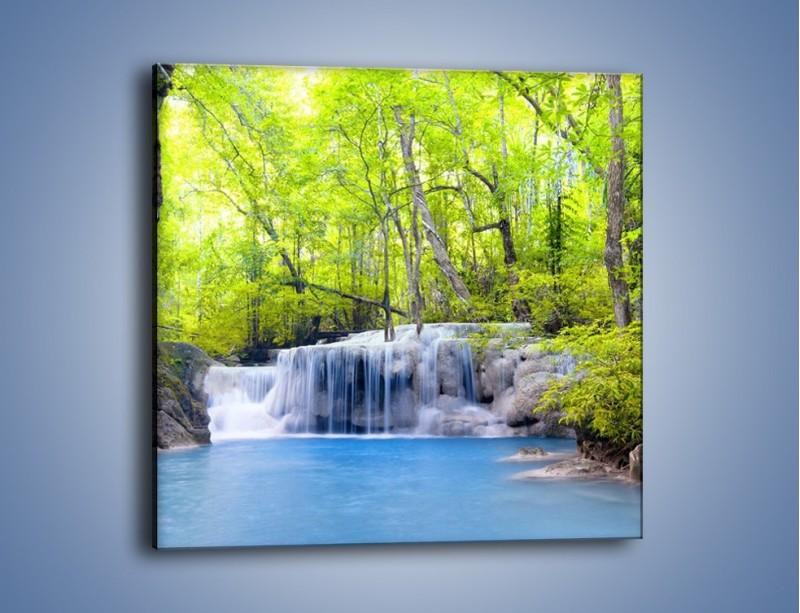 Obraz na płótnie – Mały leśny wodospad – jednoczęściowy kwadratowy KN057
