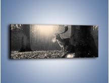 Obraz na płótnie – Jeleń w sepii – jednoczęściowy panoramiczny Z250