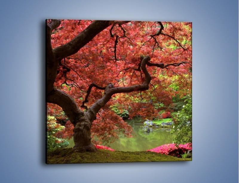 Obraz na płótnie – Pejzaż jak w raju – jednoczęściowy kwadratowy KN069