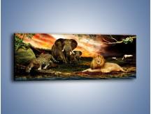 Obraz na płótnie – Afrykańscy przyjaciele przy wodopoju – jednoczęściowy panoramiczny Z271