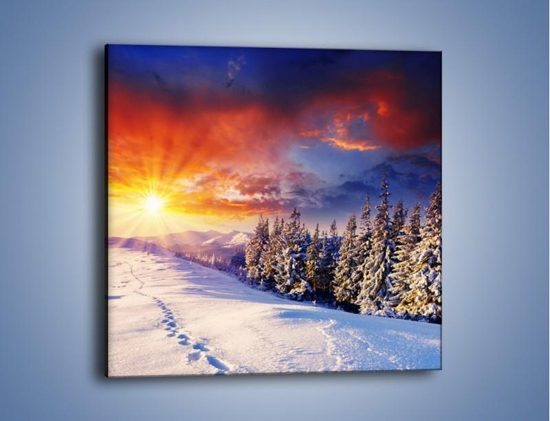 Obraz na płótnie – Urok zimowej pary – jednoczęściowy kwadratowy KN098