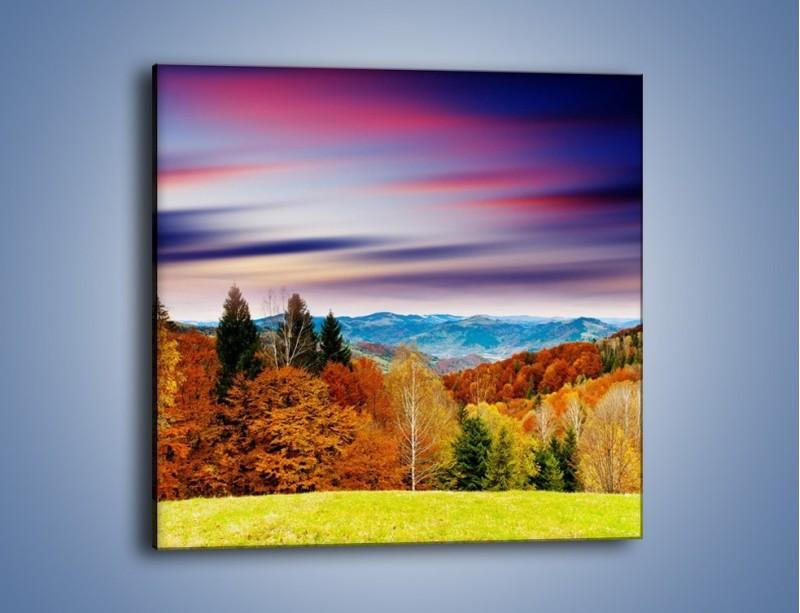 Obraz na płótnie – Drzewa w kolorach jesieni – jednoczęściowy kwadratowy KN099