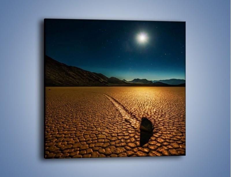 Obraz na płótnie – Kamienna mozaika na ziemi – jednoczęściowy kwadratowy KN1019