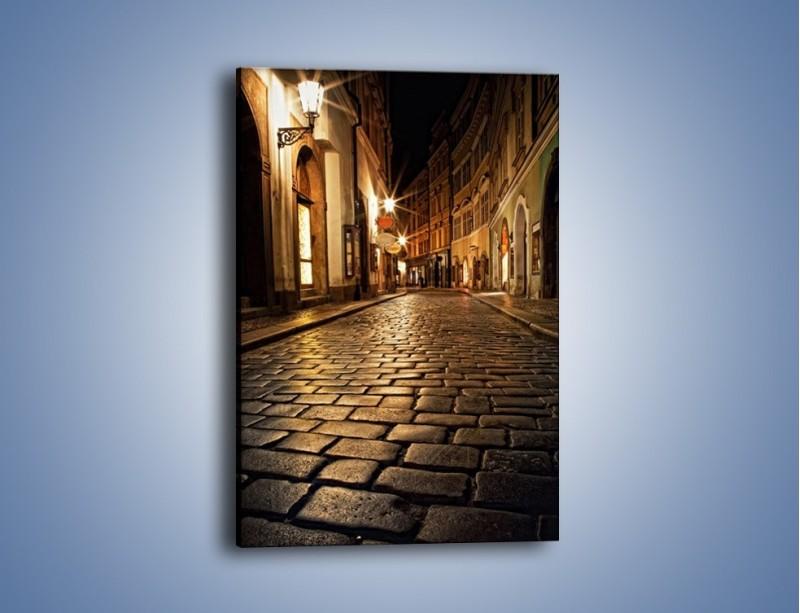 Obraz na płótnie – Wybrukowana uliczka w świetle nocnych lamp – jednoczęściowy prostokątny pionowy AM060