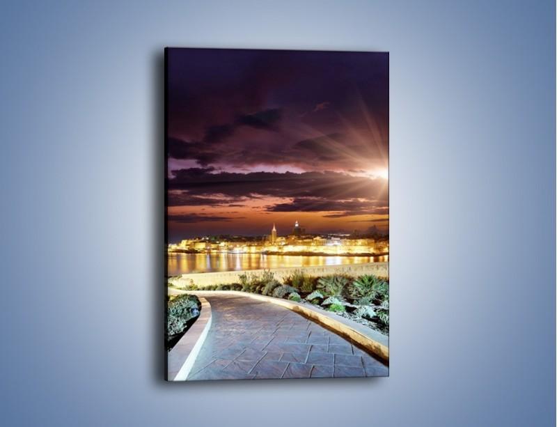 Obraz na płótnie – Błysk światła nad miastem wieczorową porą – jednoczęściowy prostokątny pionowy AM063