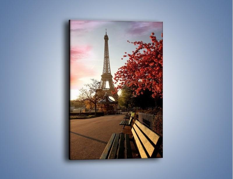 Obraz na płótnie – Wieża Eiffla widziana z parku – jednoczęściowy prostokątny pionowy AM076
