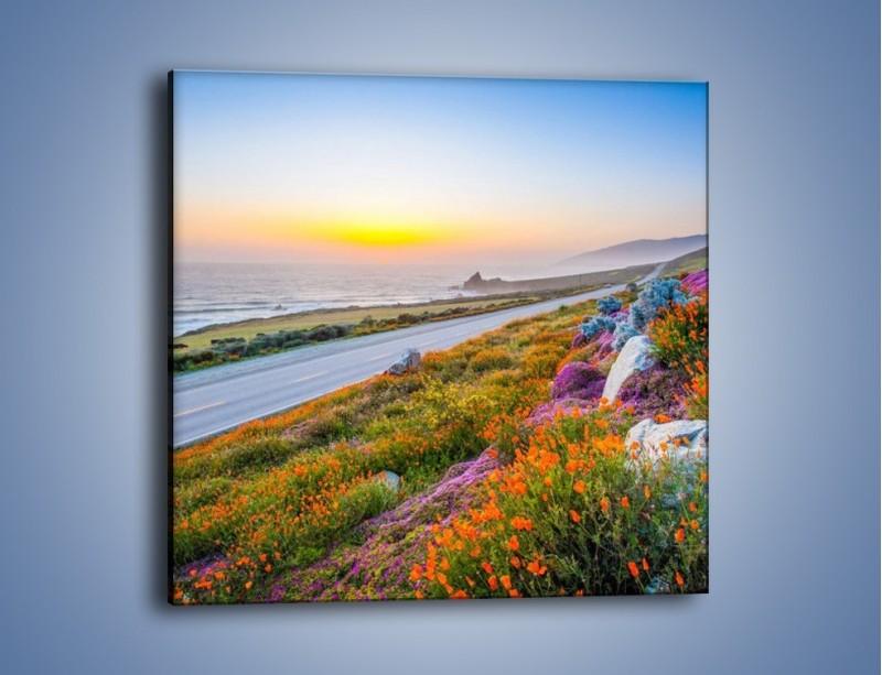 Obraz na płótnie – Kolory wiosny w kwiatach – jednoczęściowy kwadratowy KN1062