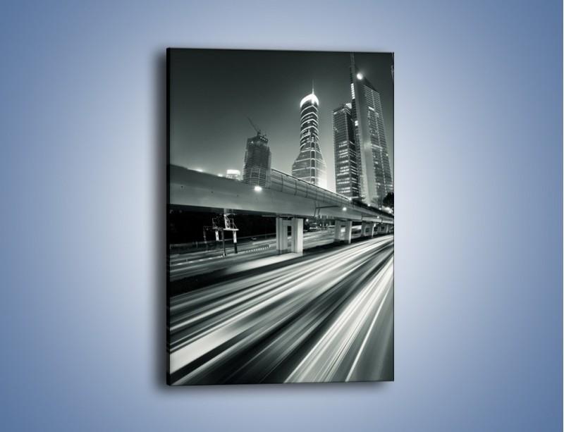 Obraz na płótnie – Miasto w odcieniach szarości – jednoczęściowy prostokątny pionowy AM205