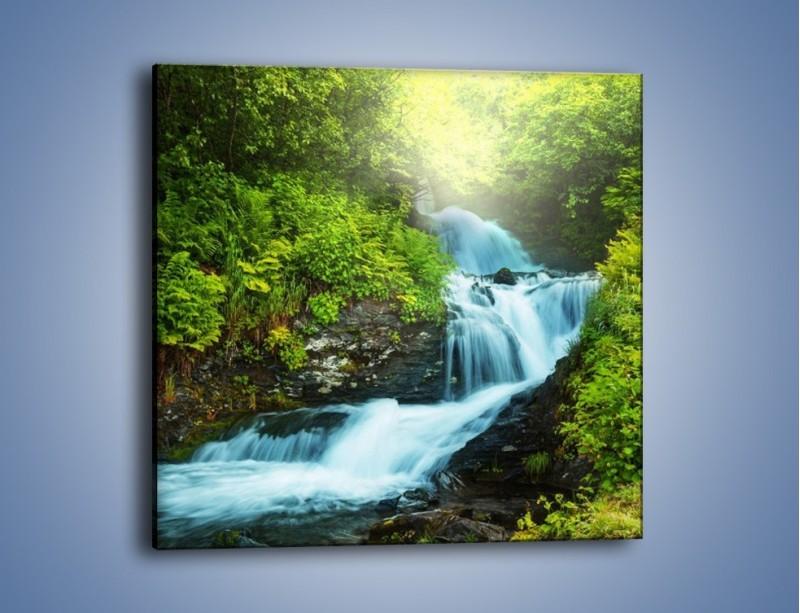 Obraz na płótnie – Spływ wodny i zieleń – jednoczęściowy kwadratowy KN1069