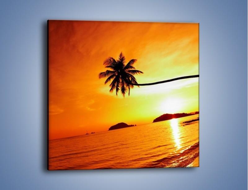 Obraz na płótnie – Palma o zachodzie słońca – jednoczęściowy kwadratowy KN1077