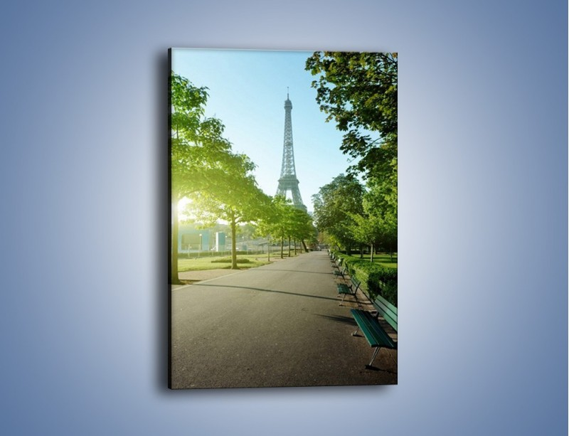 Obraz na płótnie – Uliczka w parku na tle Wieży Eiffla – jednoczęściowy prostokątny pionowy AM308