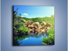 Obraz na płótnie – Bogata roślinność nad wodą – jednoczęściowy kwadratowy KN1082A