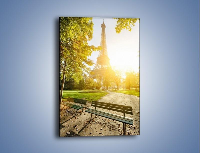 Obraz na płótnie – Wieża Eiffla w świetle słońca – jednoczęściowy prostokątny pionowy AM398