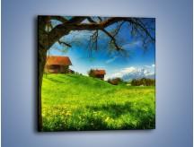 Obraz na płótnie – Chatki na polanie – jednoczęściowy kwadratowy KN1085A