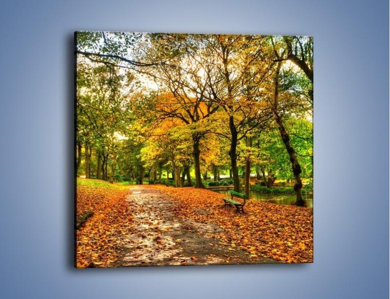 Obraz na płótnie – Piękna jesień w parku – jednoczęściowy kwadratowy KN1098A