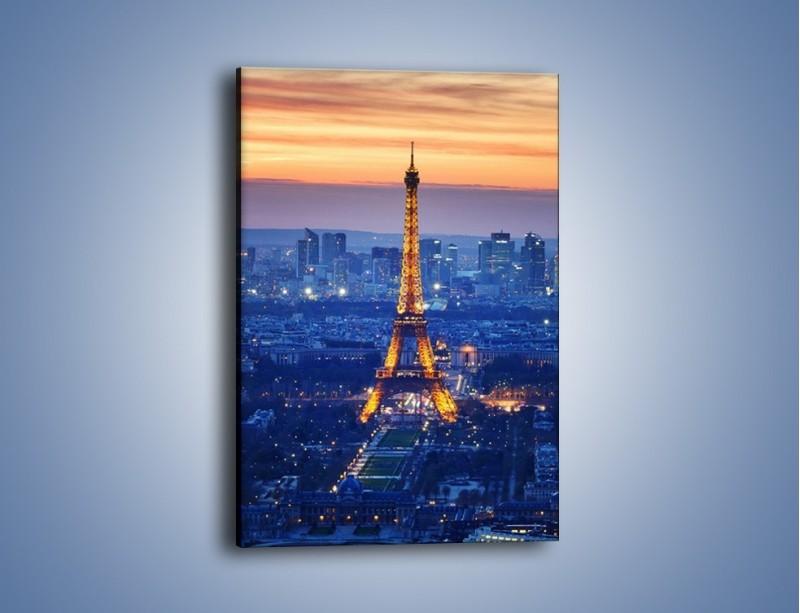 Obraz na płótnie – Światła Wieży Eiffla – jednoczęściowy prostokątny pionowy AM778