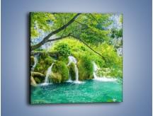 Obraz na płótnie – Cienkim strumieniem do rzeki – jednoczęściowy kwadratowy KN1102