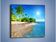 Obraz na płótnie – Bajeczne wakacyjne wspomnienia – jednoczęściowy kwadratowy KN1110A