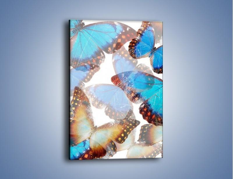 Obraz na płótnie – Motyl w niebieskim kolorze – jednoczęściowy prostokątny pionowy GR403
