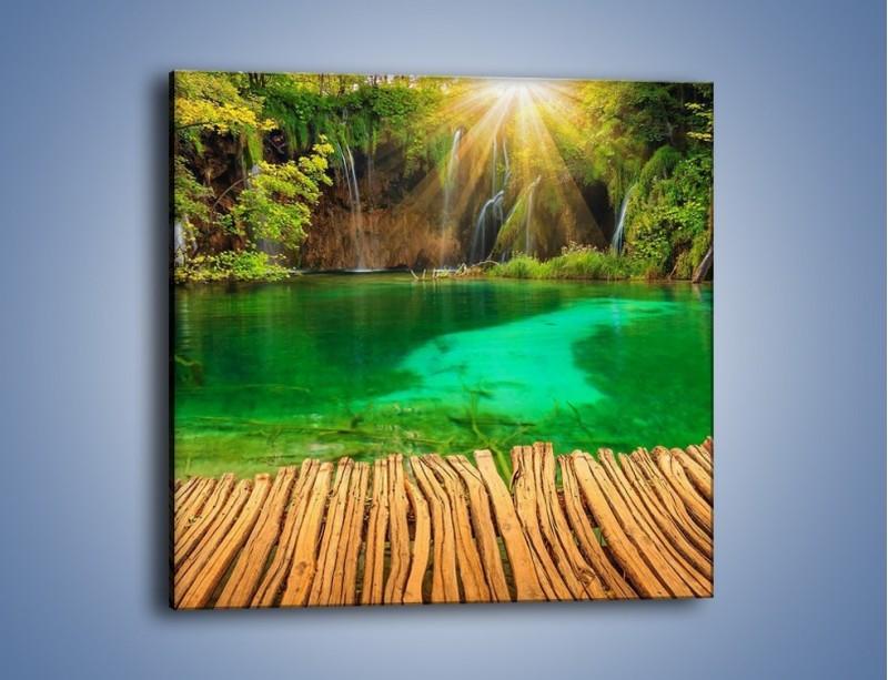 Obraz na płótnie – Zielone oczko wodne i drewno – jednoczęściowy kwadratowy KN1149A