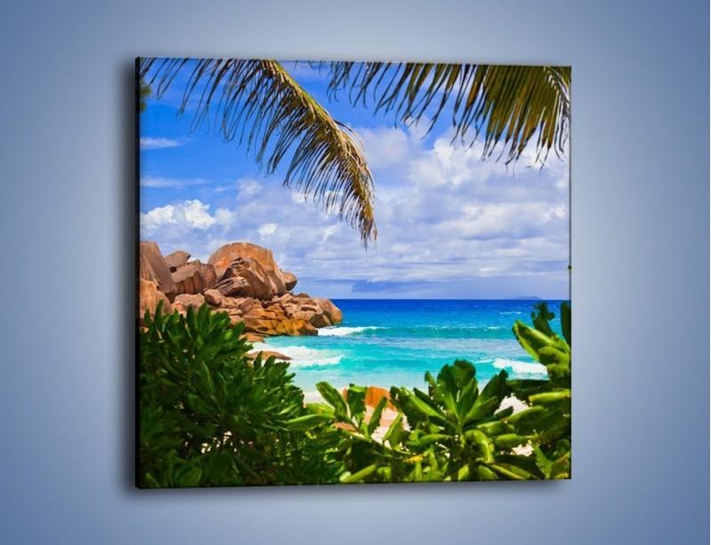 Obraz na płótnie – Urlop pod palmami – jednoczęściowy kwadratowy KN1191A