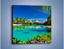 Obraz na płótnie – Biały piasek i palmy – jednoczęściowy kwadratowy KN1201A