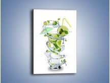 Obraz na płótnie – Schłodzona limonka w orzeźwiającym drinku – jednoczęściowy prostokątny pionowy JN034