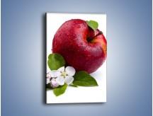 Obraz na płótnie – Polskie zdrowe jabłko – jednoczęściowy prostokątny pionowy JN102