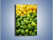 Obraz na płótnie – Cytrynowo-limonkowy duet – jednoczęściowy prostokątny pionowy JN190