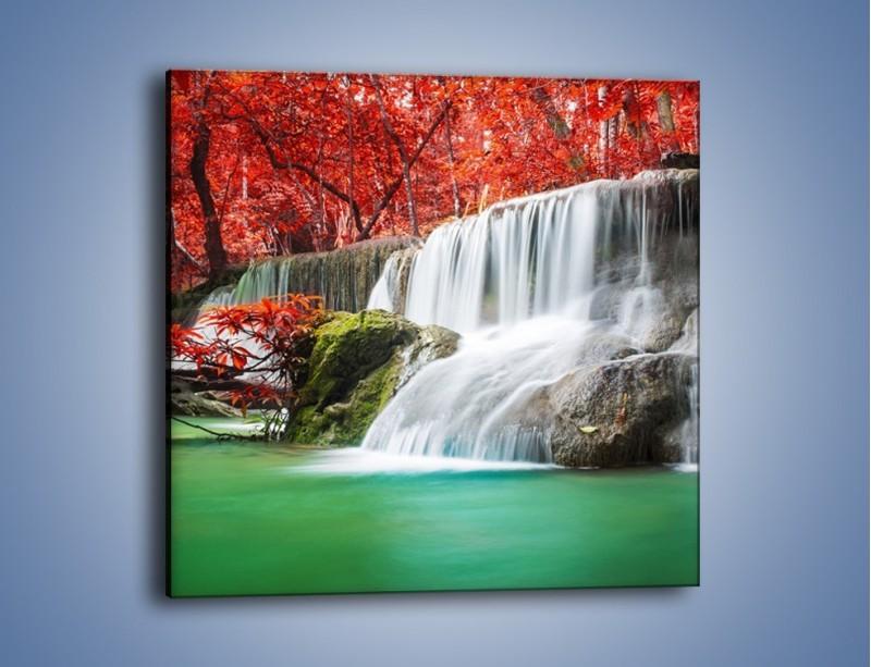 Obraz na płótnie – Zachwycić się naturą – jednoczęściowy kwadratowy KN1250A