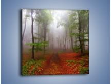 Obraz na płótnie – Budzący się lasek – jednoczęściowy kwadratowy KN1285A
